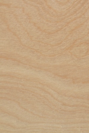 Flush Doors Bayer Built Woodworks Minnesota